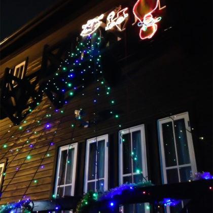 関原の森クリスマスイルミネーション